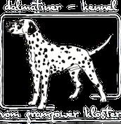 Rotsch Dalmatiner